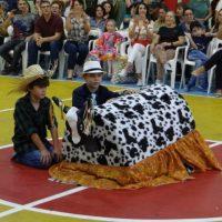 festa-junina (98)