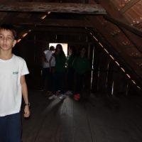 caverna-botuvera (57)