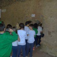 caverna-botuvera (63)