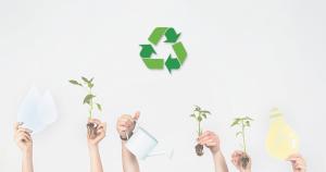 Ensinar sustentabilidade para crianças